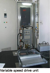 Variable speed drive unit